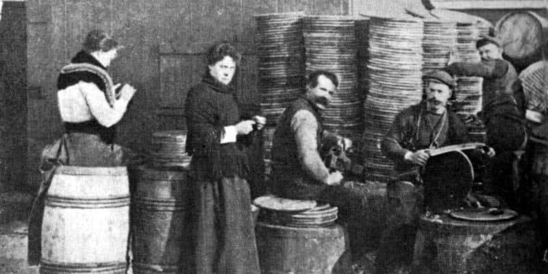 Storia della maglia